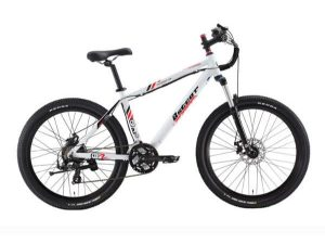 Electric-Bicycle-image